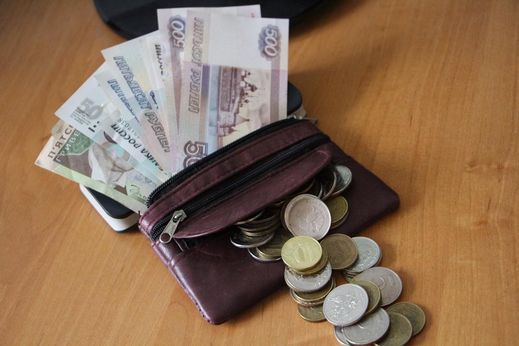 Электронные деньги способы их заработка